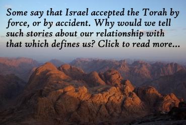Mount_Sinai essay
